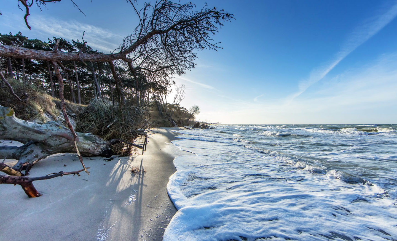 Fischland Darß Zingst Geführte Wanderung   Wandern & Relaxen auf ...