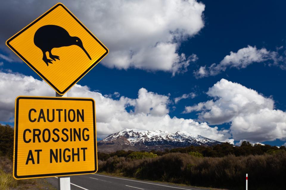 Vulkan Ruapehu, Tongariro Nationalpark