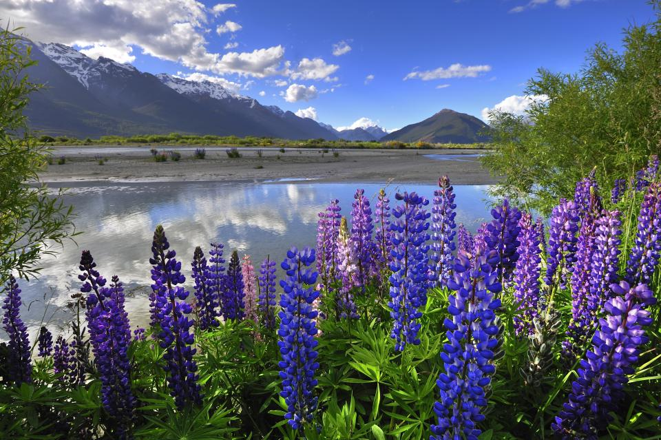 Impressionen von der Südinsel Neuseelands