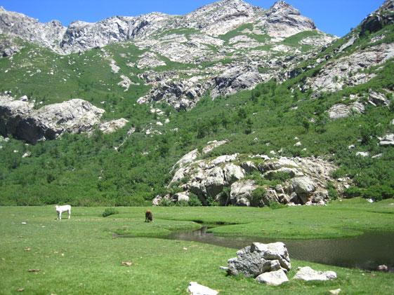 Korsikas Landschaftsvielfalt