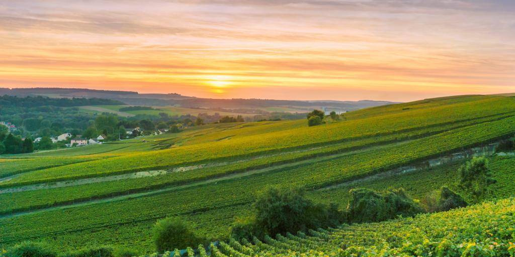 Wandern in Frankreich - Genusswanderreisen vor facettenreichen Kulissen erleben