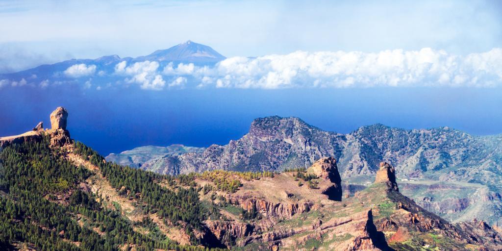 Wandern auf Gran Canaria: Miniaturkontinent mit vielfältiger Flora und Fauna!