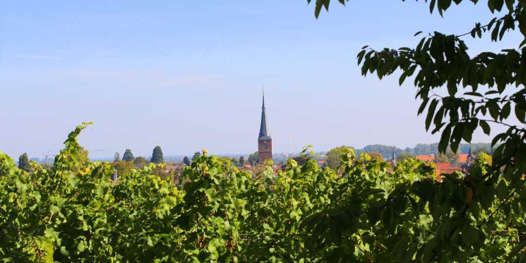 Wandern in der Pfalz - Wanderurlaub individuell oder als Gruppenwanderung