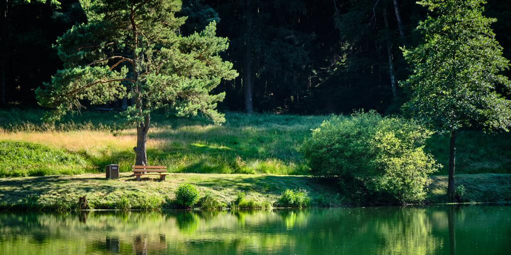 Wandern im Spessart: Naturpark mit Wäldern, Tälern und Höhen!