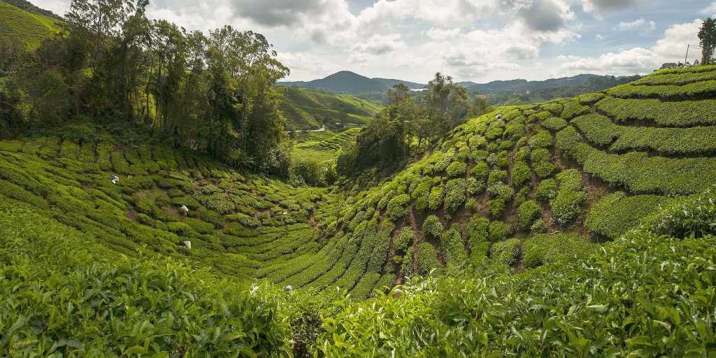 """Wandern in Asien - Zu Fuß auf dem Kontinent der """"alten Weisheit"""""""