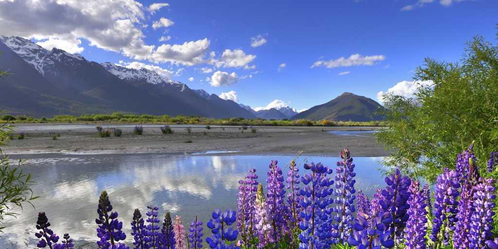 Wandern in Neuseeland - Stewart Island das Inselparadies im Süden