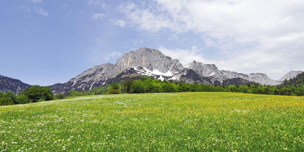 Wandern in Bayern, Geführte Gruppenwanderungen, Individualwanderreisen