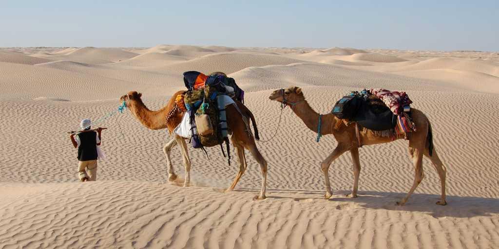 Wandern in Ägypten - Landschaft und Kultur entdecken