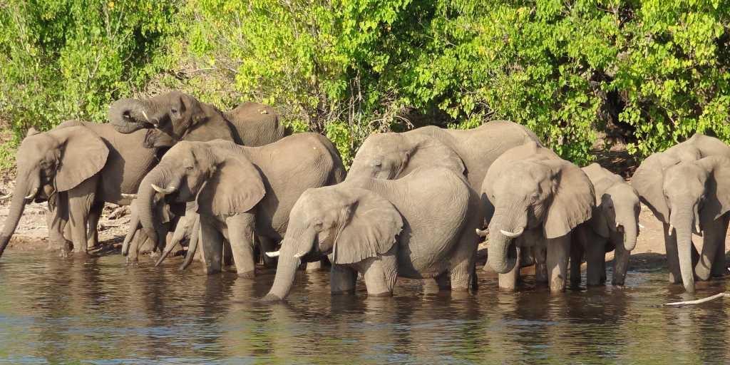 Wandern in Botswana - unendliche Weiten beim Wanderurlaub  entdecken
