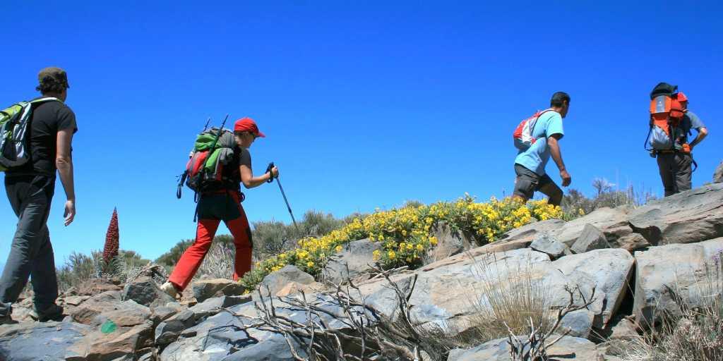 Wandern auf den Kanarischen Inseln - dem ewigen Frühling auf der Spur