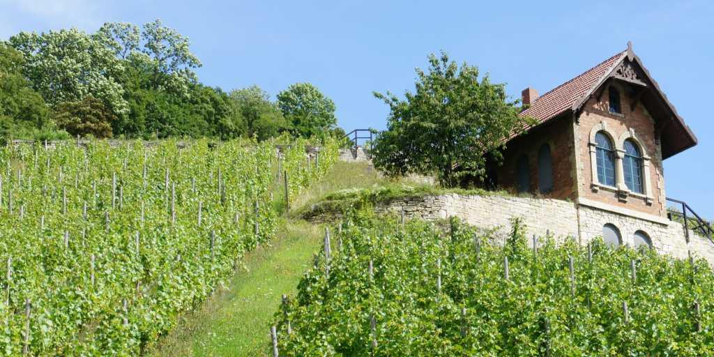 Wandern in der Region Saale-Unstrut - Wanderurlaub individuell oder als Gruppenwanderung