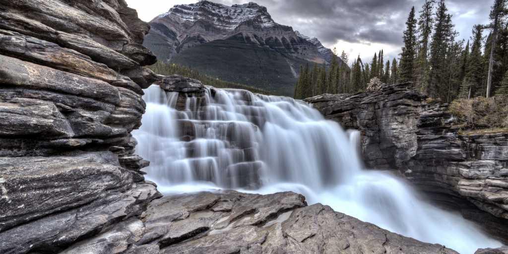 Wilcox Pass im Jasper Nationalpark