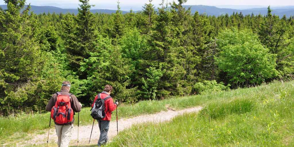 Wandern auf dem Rennsteig im Thüringer Wald