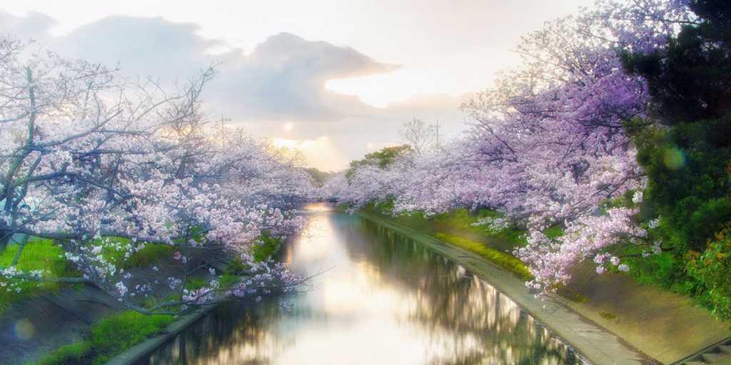 Wandern im farbenprächtigen Japan - Geführte Wanderung - Japan wie es am Schönsten ist