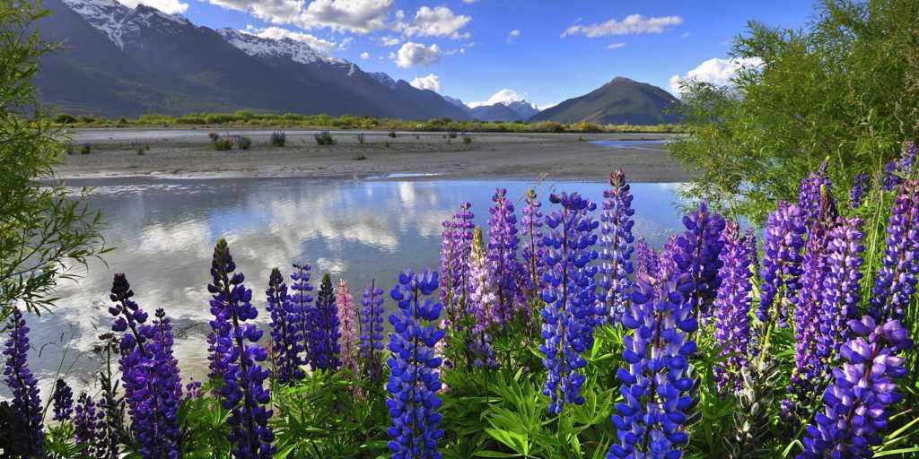 """Neuseeland - Geführte Wanderung """"Wandern auf leichten Wegen"""""""