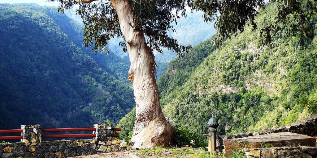 Standort-Wanderreise über die Höhen und in den Krater der Kanareninsel La Palma