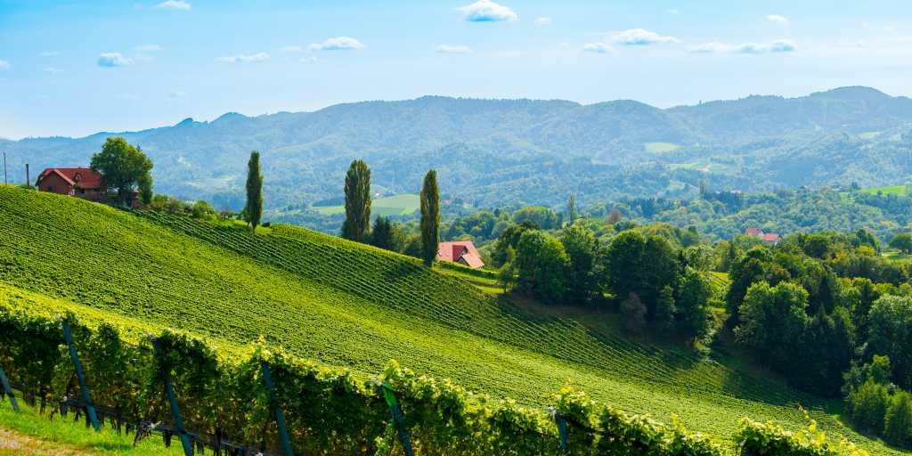 Steiermark: Individuell wandern ohne Gepäck auf dem steirischen Vulkanlandweg