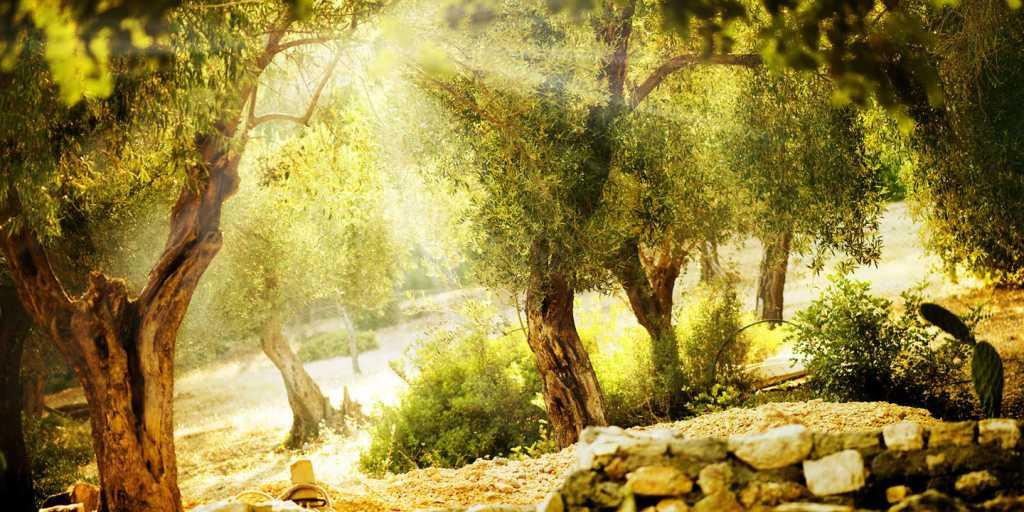 wandern auf der Halbinsel Mani in Griechenland