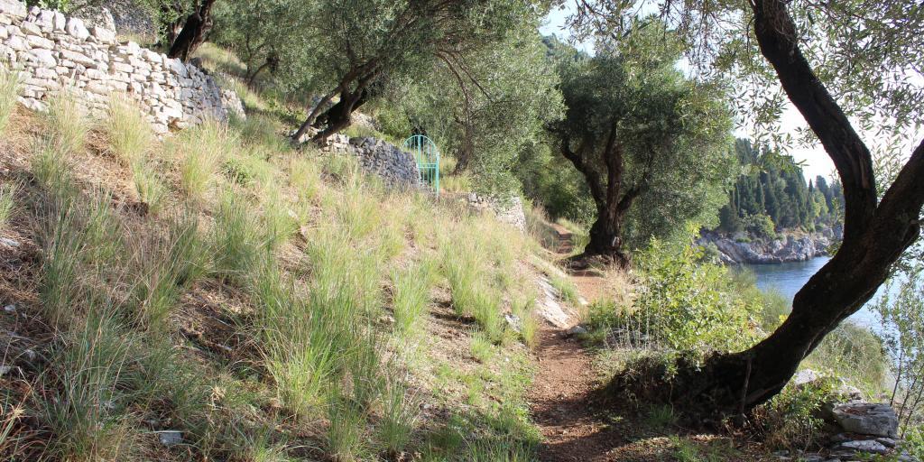 Korfu: Individuell wandern ohne Gepäck auf dem Corfu Trail