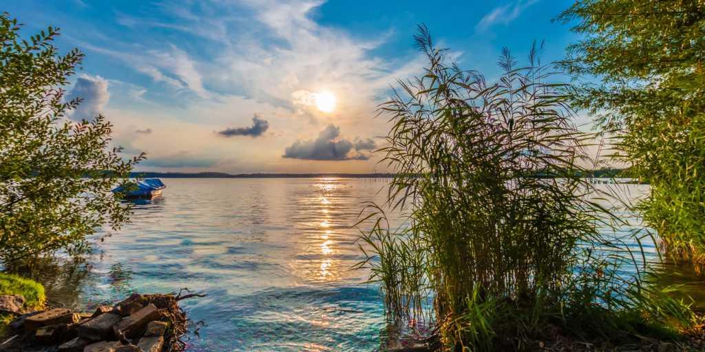 Seen und Wälder im Müritz-Nationalpark wandernd erleben