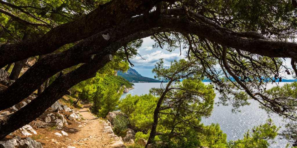 An Kroatiens schönster Küste wandern
