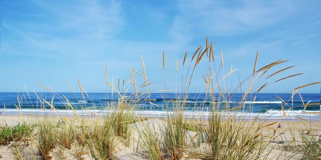Wandern an der Algarve - die schöne Atlantikküste in Portugal