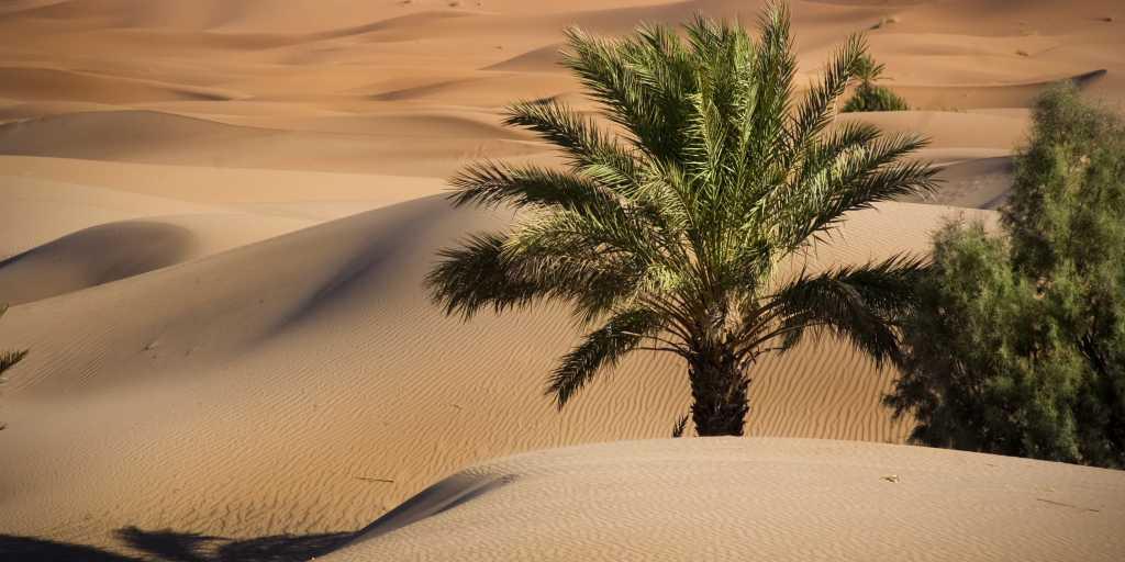 Symphonie der Farben - Marokko: Wanderreise (geführt)