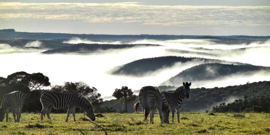 Von Kapstadt in die Kalahari - wandern in Südafrika