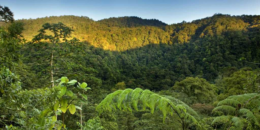 Geführte Gruppenwanderreise: Costa Rica zu Fuß