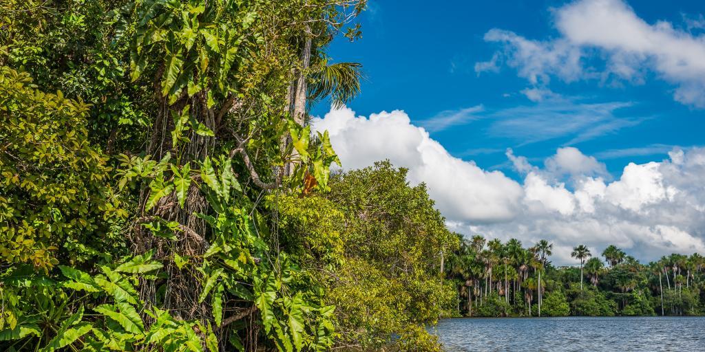 Wandern und Trekking am Amazonas - geführte Gruppenwanderreise