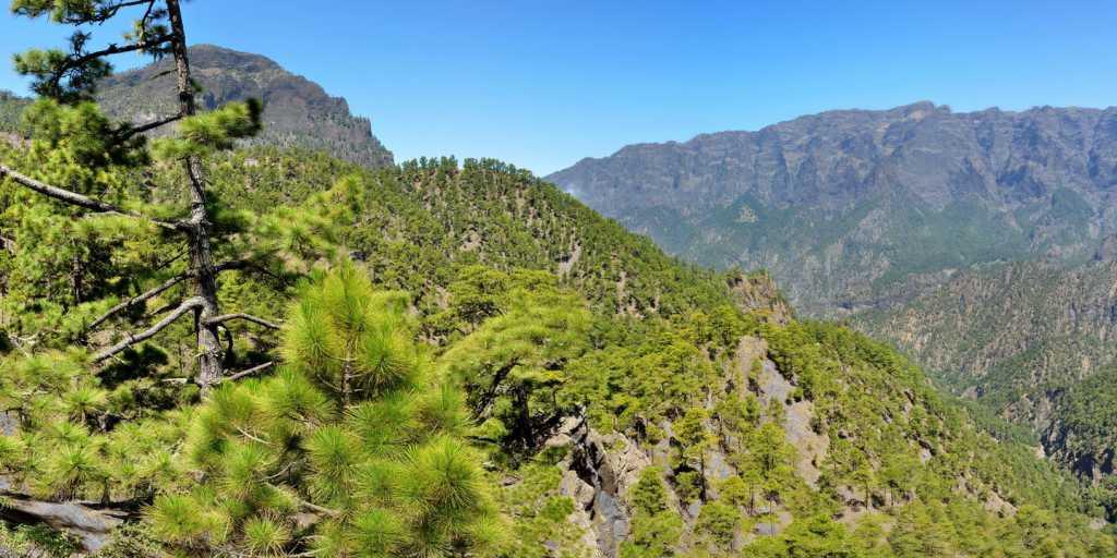 Wandern auf La Palma - 8-tägige Reise auf der kanarischen Wanderinsel