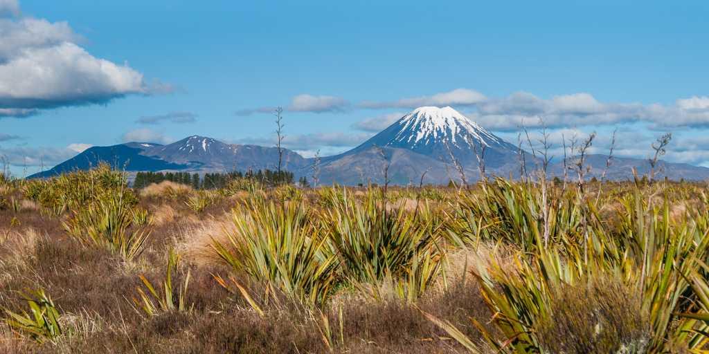 Neuseeland: Geführte Gruppenwanderreise - Natur Hautnah Erleben 2020/2021