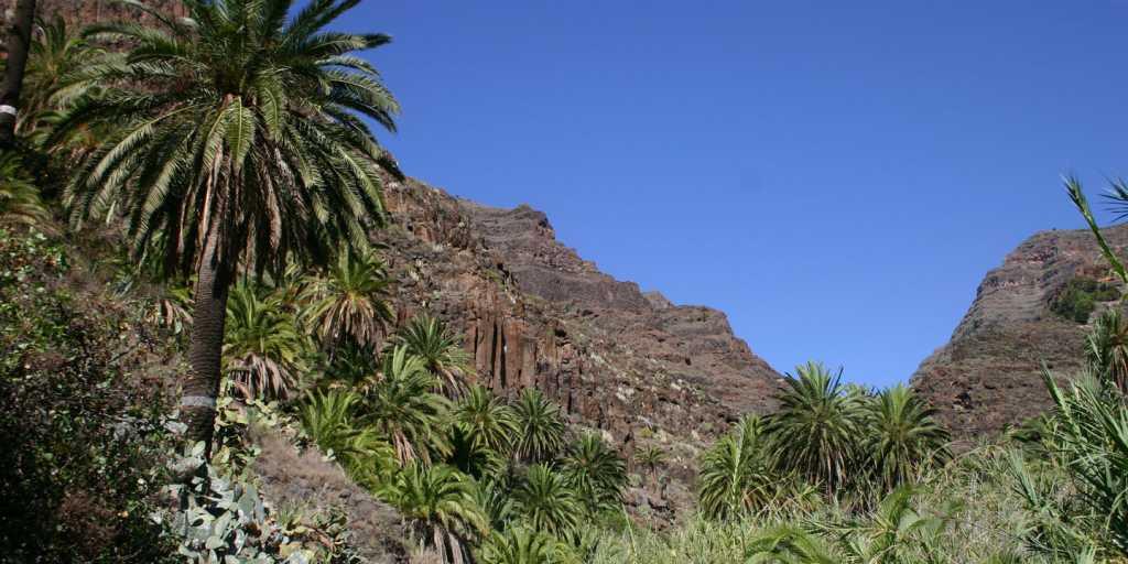 Wandern auf La Gomera - Flexwandern auf den Kanaren