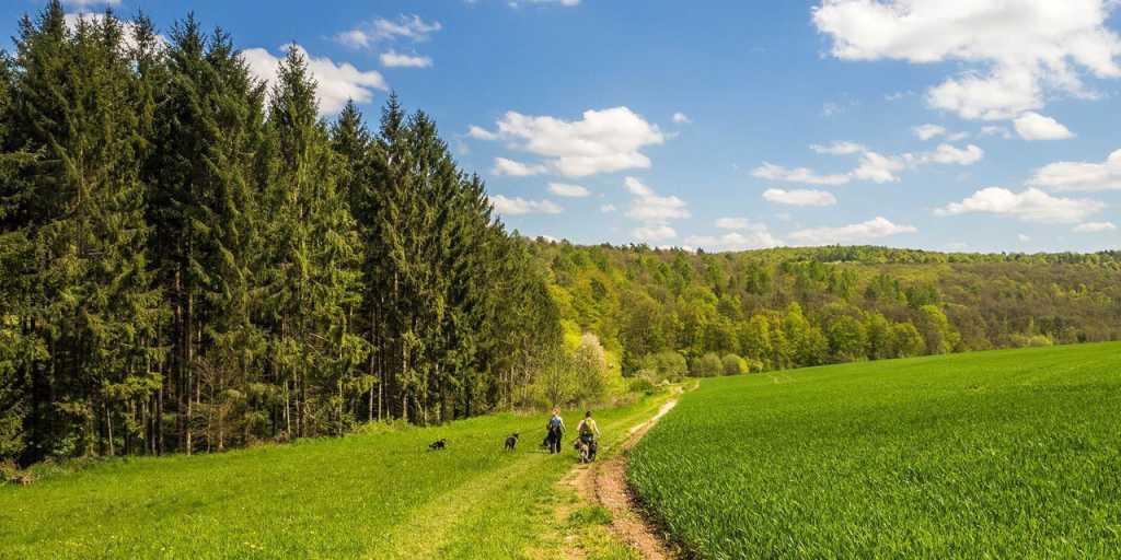 Wandern auf dem Hochrhöner - 10 Tage durch die Rhön