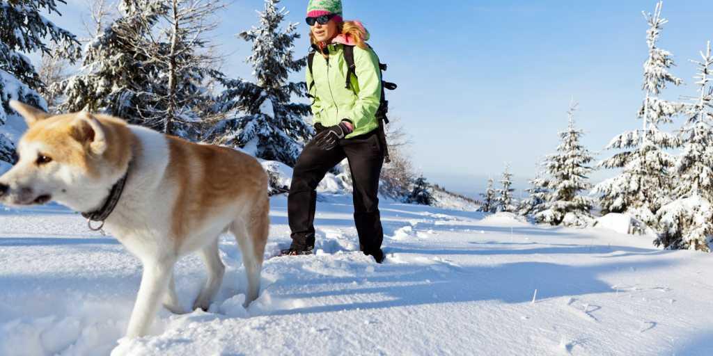 Wandern im Winter: Großglockner