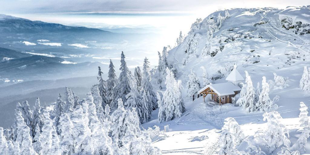 Winterzauber im Bayerischen Wald - individuell wandern im Winter