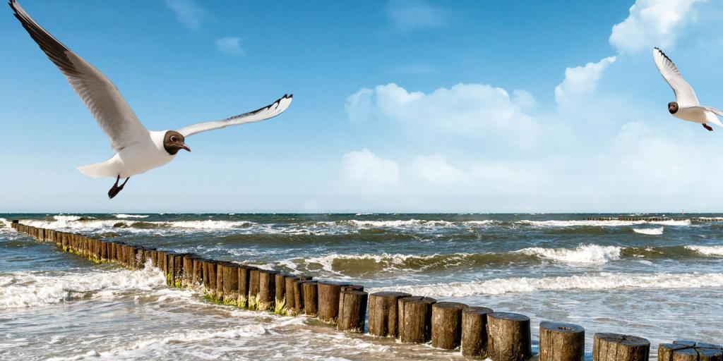 Wandern an der Ostseeküste - Sternwanderung Stralsund