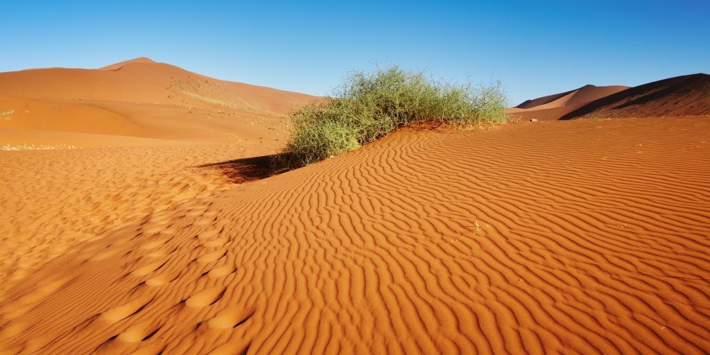 Wo die Natur unendlich ist - Geführte Gruppenwanderreise in Namibia