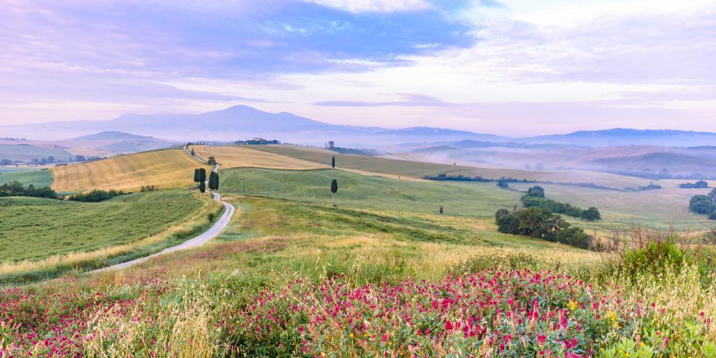 Toskana: Wandern ohne Gepäck individuell - Florenz, Chianti ...