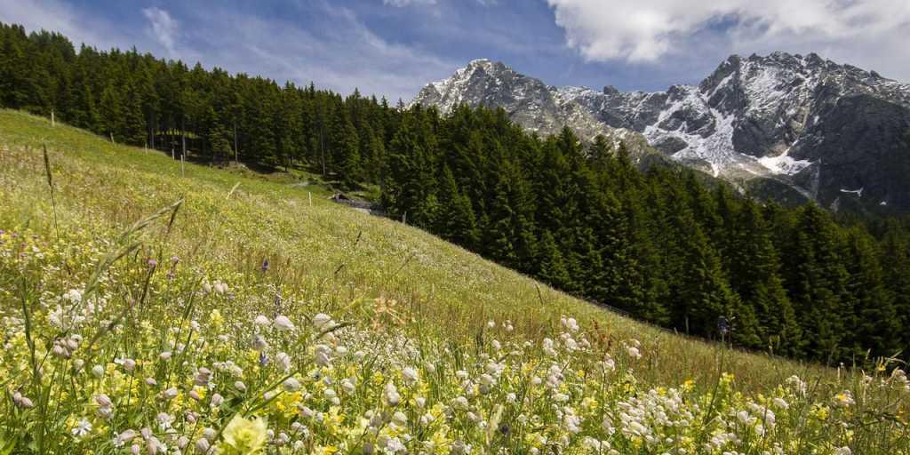 Wandern im Herzen Südtirols - Kastanien- und Weinwegwanderung zu Füßen der Dolomiten