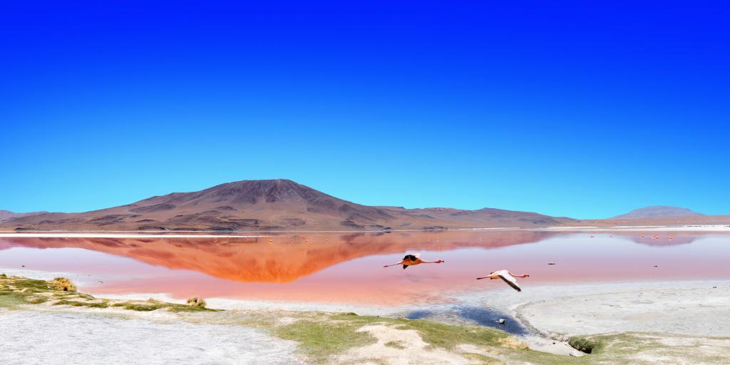 Bolivien: Geführte Wanderreise zwischen Vulkanen, Salzseen und Geysiren