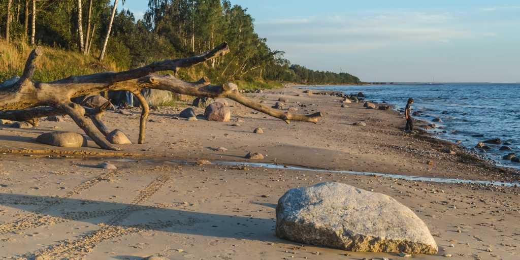 Baltikum: Geführte Wanderreise durch Lettland, Litauen & Estland