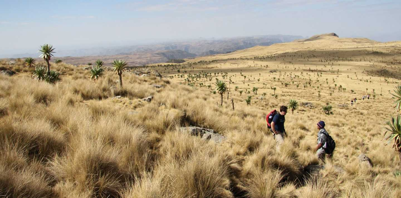 Wandern in Äthiopien - Hochland und Mittelgebirge entdecken