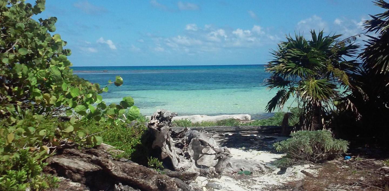 Wandern in Belize - Grünes Herz und karibische Strände erkunden