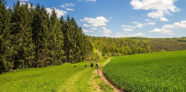 Wandern in Deutschland - Vom Meer zu den Alpen zu Fuß entdecken