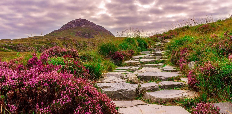 """Wandern in Irland - die """"grüne Insel"""" entdecken"""