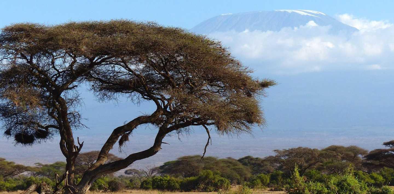 Wandern in Tansania - Serengeti, Kilimanjaro und Sansibar entdecken