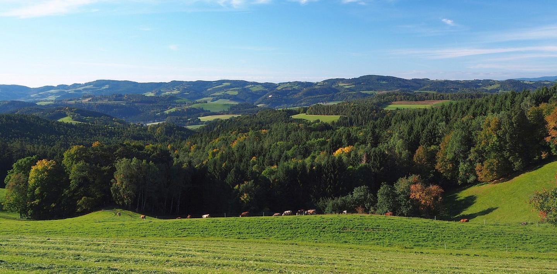 Wandern in Niederösterreich - Wanderurlaub individuell oder als Gruppenwanderung