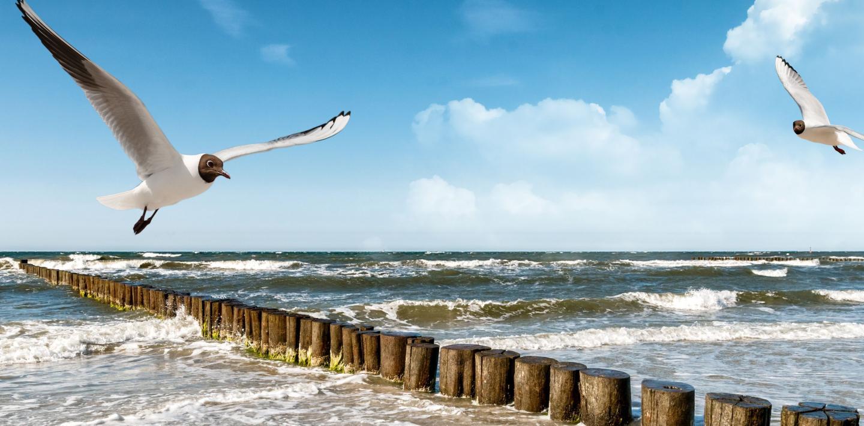 Wandern an der Ostsee - am Strand wandern