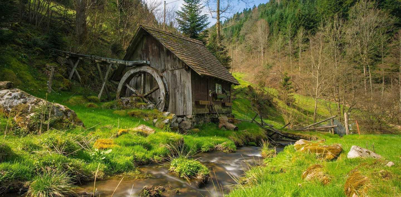 Wandern auf dem Westweg im Schwarzwald